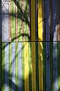 Germany, Berlin, Shadow on coloured wooden wall - JMF000135