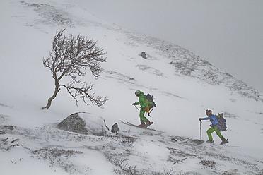 Norway, Lyngen, Skiers walking in blizzard - FFF001287