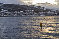 Norway, Narvik, Mature man paddling in polar ocean - FFF001288