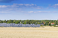 Germany, Saxony, View of solar panels - MJF000020
