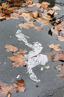 Germany, Frankfurt, leaves and paper in puddle - MUF001218