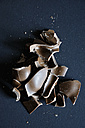 Broken chocolate figurine on coloured background - AXF000081