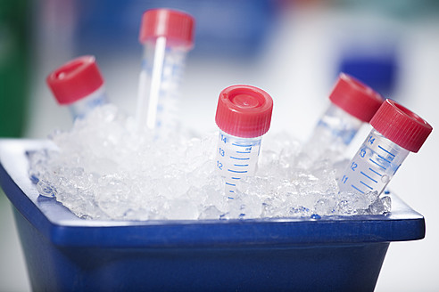 Germany, Bavaria, Munich, Test samples stored in ice - RBF000881