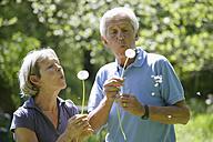 Germany, Bavaria, Senior couple blowing blowball - TCF002636
