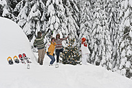 Austria, Salzburg, Men and women dancing by christmas tree in winter - HHF004223