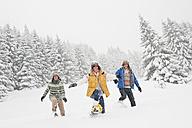 Austria, Salzburg, Men and woman walking through winter landscape - HHF004226