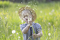 Germany, Bavaria, Girl blowing dandelion seed in meadow - TCF002747