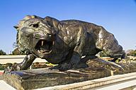 India, Mysore, Lion statue at Mysore Palace - MBE000397