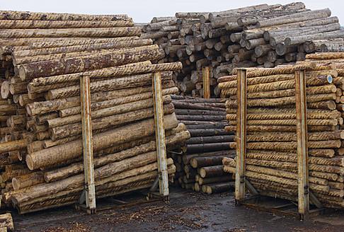 Germany, Baden-Wuerttemberg, Bopfingen, Stack of tree logs - TCF002798