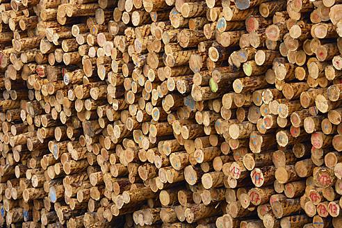 Germany, Baden-Wuerttemberg, Bopfingen, Stack of tree logs - TCF002799