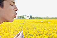 Germany, Hamburg, Teenage boy blowing dandelion, close up - MSF002677