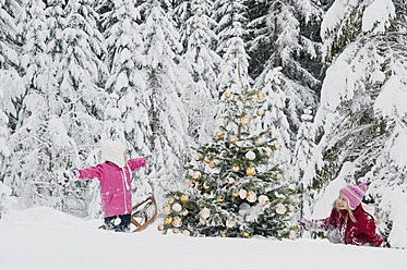 Austria, Salzburg County, Girls having fun in snow with christmas tree - HHF004257