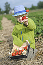 Germany, Saxony, Boy showing strawberry in field, smiling - MJF000054