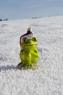 Germany, Frog ornament for christmas tree decoration - AWDF000662
