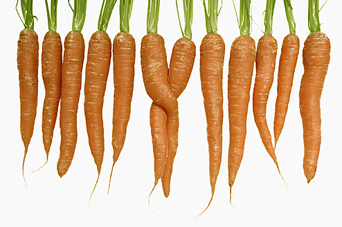 Row of carrots with two twisted carrots on white background - LRF000540
