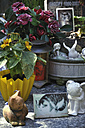 Germany, Bavaria, Cemetery for pets - AX000105