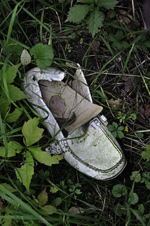 Germany, Old white shoe in shrubbery - AXF000109