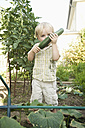 Germany, Bavaria, Boy holding cucumber in garden - RNF000999