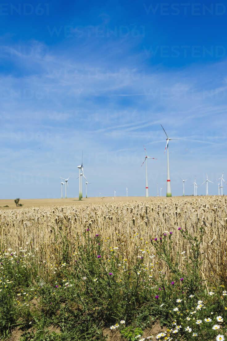 Germany, Saxony, View of wind turbine in wind park - MJF000080 - Jana Mänz/Westend61