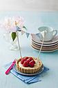 Plate of raspberry tart with vanilla cream - ECF000051