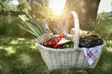 Germany, Cologne, View of picnic basket - PDYF000047