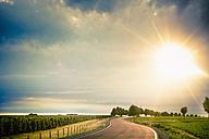 Germany, Saxony, Road through farm land - MJF000134