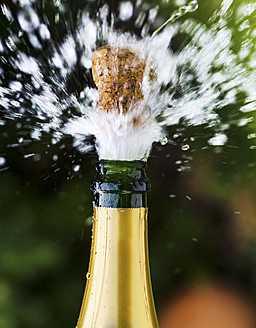 Opened champagne bottle with flying cork - EJWF000099