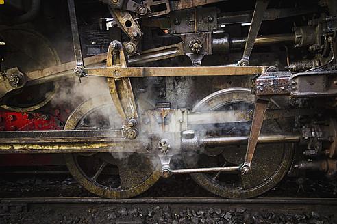 India, Tamil Nadu, Nilgiri Mountain Railway passing through Mettupalayam and Ooty - MBE000548