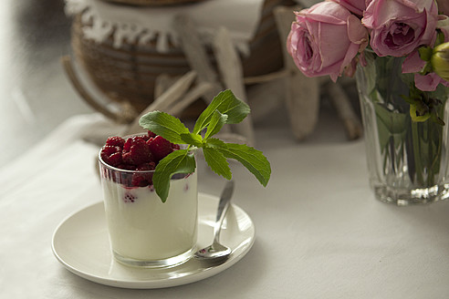 Glass of cream with raspberry and stevia, close up - KRF000018