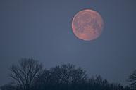 Germany, Bavaria, Full moon in morning - UMF000461