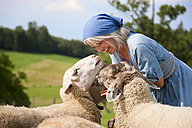 Germany, Bavaria, Mature woman playing with sheep on farm - HSIYF000064