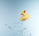 Rubber duck against blue background - FMKF000702