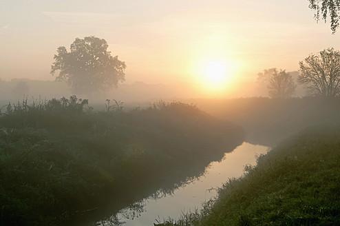Germany, Brandenburg, View of river with mist - BFRF000078