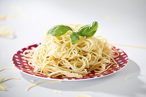 Germany, Plate of spaghetti with basil, close-up - RFF000076
