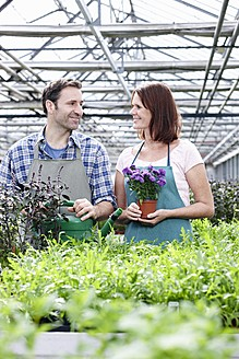 Germany, Bavaria, Munich, Mature man and woman in greenhouse with rocket and basil plant - RREF000009