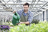Germany, Bavaria, Munich, Mature man in greenhouse watering rocket plant - RREF000012