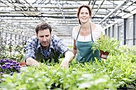 Germany, Bavaria, Munich, Mature man and woman standing with rocket plant in greenhouse - RREF000085