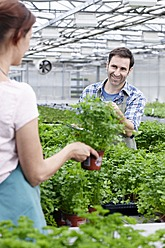 Germany, Bavaria, Munich, Mature man and woman in greenhouse between parsley plants - RREF000023