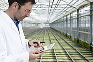 Germany, Bavaria, Munich, Scientist in greenhouse with digital tablet examining bed with seedlings - RREF000053