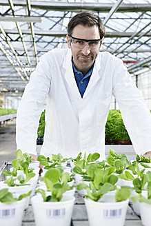 Germany, Bavaria, Munich, Scientist in greenhouse with corn salad plants - RREF000059