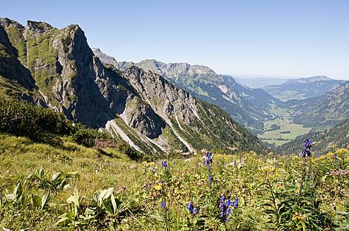 Germany, Bavaria, View of alpine meadow - UMF000484