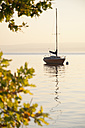 Germany, Bavaria, Sailing boat on Lake Ammersee at sunset - UMF000523