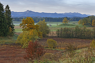 Germany, Bavaria, View of landscape in autumn - SIEF002900