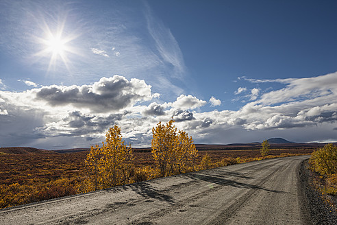 USA, Alaska, View of Denali Highway in autumn - FOF004396