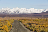 USA, Alaska, View of Denali Highway in autumn - FOF004398