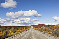 USA, Alaska, View of Denali Highway in autumn - FOF004407