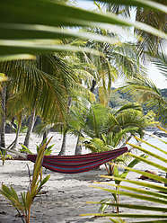 Central America, Costa Rica, Hammock between palms at Puerto Carrillo - BSCF000196