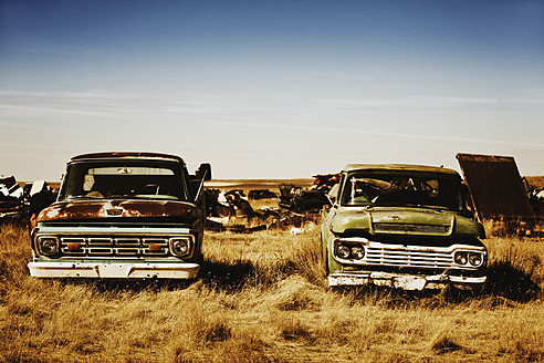 Canada, Junk yard with old US cars - MSF002810