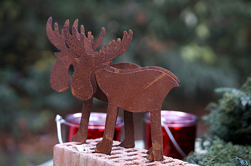 Germany, Christmas decoration with elks - HOHF000021