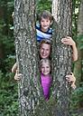 Austria, Portrait of friends standing behind tree trunk, smiling - WWF002733